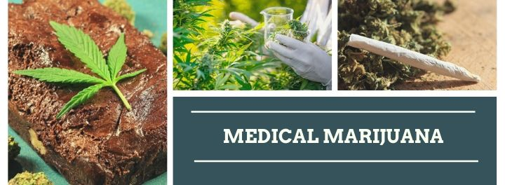 5 Stupidest Things We've Ever Heard about Marijuana