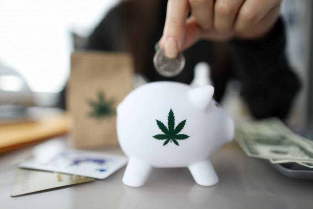 Save Money on Your Next Cannabis Purchase